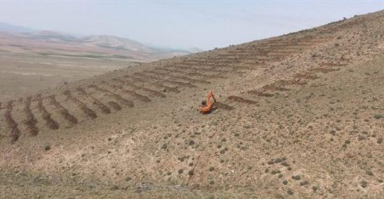 Arazi hazırlığı yaptırılacak