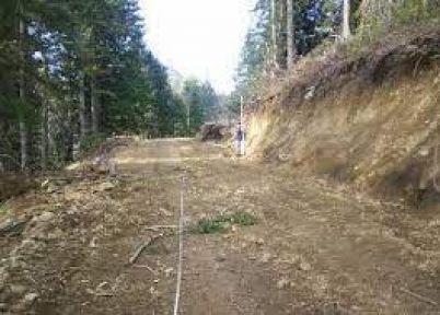 B tipi orman yolu yapımı