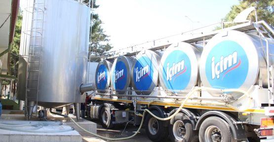 günlük 75 ton  süt toplandı