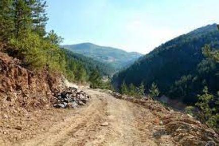 Orman yollarına sanat yapıları yaptırılacak